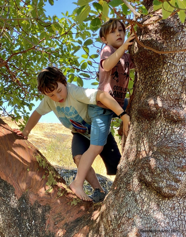 """The """"O"""" Boys climbing trees together"""