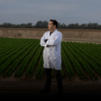 Pandemic puts a hold on lettuce research JP Dundore-Arias and his road to agronomy