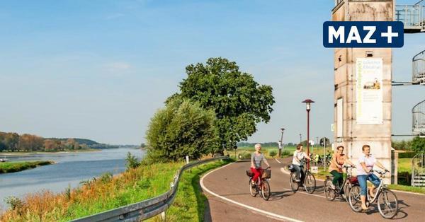 Das sind die schönsten Routen auf dem Elberadweg in Brandenburg
