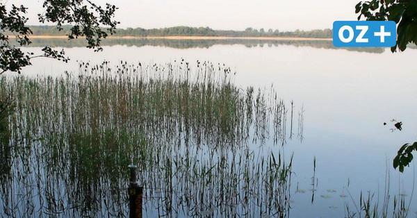 Naturschutzbund: Radweg-Projekt um Borgwallsee nicht realisierbar