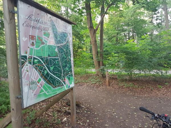 Im Stadtwald dienen die historischen Wegepläne zur Orientierung. Foto: Bernd Haase