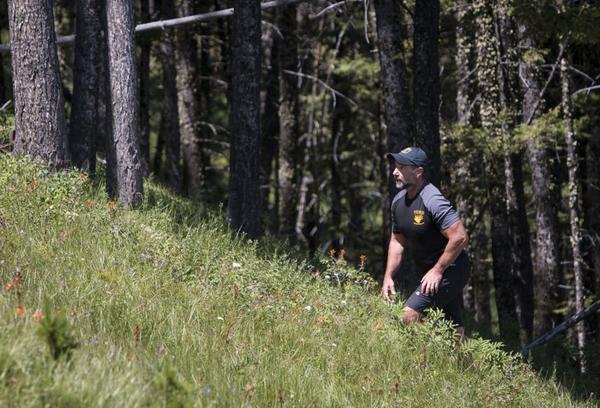 Teton County forms new animal attack response team ahead of hunting season
