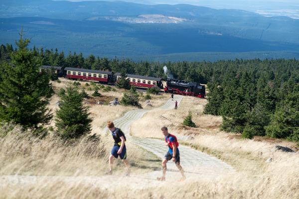 Die Brockenbahn auf dem Weg vom Gipfelplateau ins Tal. (Foto: Klaus-Dietmar Gabbert/dpa)