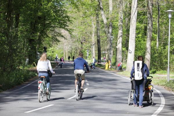 Auf der Waldchaussee in der Eilenriede haben Fahrradfahrer am Wochenende freie Fahrt. (Foto: Franson)