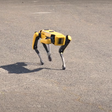 I walked Spot, the Boston Dynamics robot dog, remotely -- and only crashed once - CNET