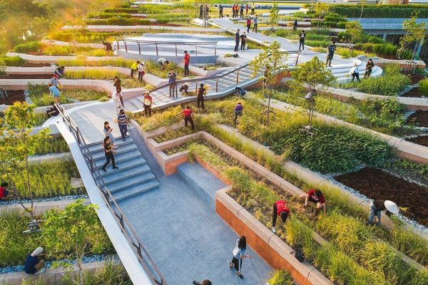 Asia's Largest Rooftop Farm Is a Rice Terrace on Top of a University