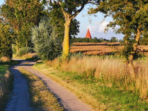 Auf idyllischen Wegen über die Insel Poel (Foto: Matthias Neckin)