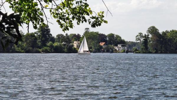 Sommeridylle am Seddinsee. Foto: Günter Mehlitz