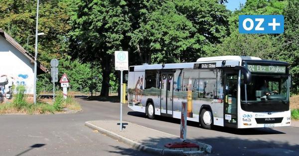 Bus und Bahn in Bad Doberan: Das soll sich ändern