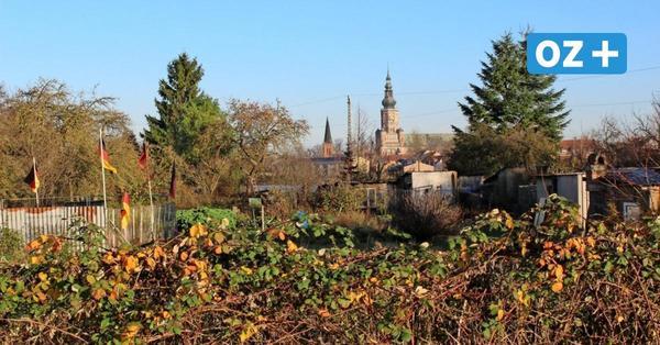 Greifswalds neue Schule liegt im Zeitplan