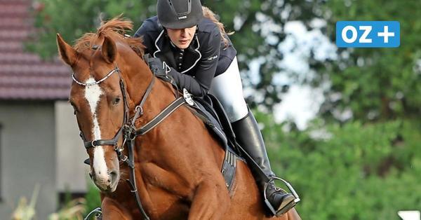 Reitturnier in Parkentin: Das erwartet Pferdefreunde am Wochenende