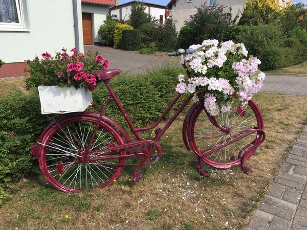 Das Blumenrad steht in Reddelich an der B105 (Foto: Anja Levien)