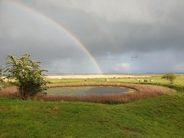 Ein Regenbogen über der Insel Poel (Foto: Stefanie Adam)