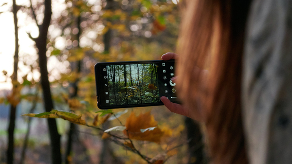 Hate Social Media but Love Nature? There's an App for That