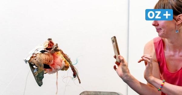 Astronauten, Fabelwesen und Kunstrasen: Künstlerbund MV stellt auf Schloss Bothmer aus