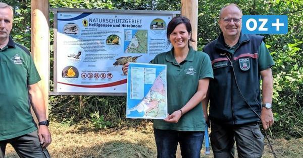 So werden in der Rostocker Heide Naturschutz und Tourismus vereint