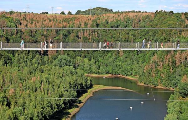 Ein Highlight im Harz: Die Hängebrücke Titan RT nahe der Rappbode-Staumauer. Foto: Matthias Bein/dpa