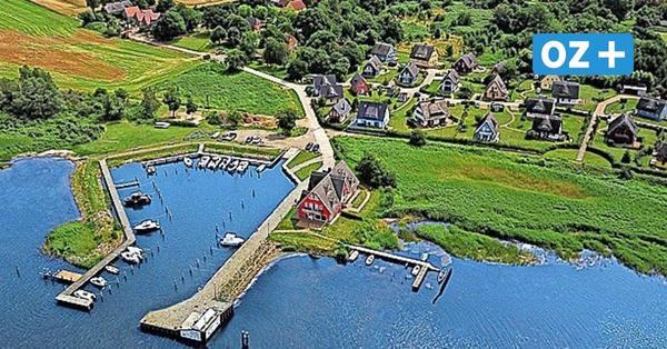 Vieregge auf Rügen: Yachthafen auf Osteeinsel wird versteigert
