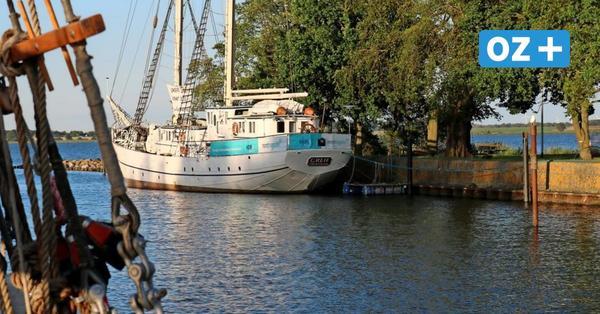 So stehen Greifswalder CDU und SPD zum Segelschulschiff Greif