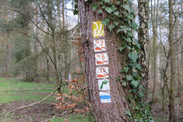 Der Weg ist sehr gut ausgeschildert. Foto: René Gaffron