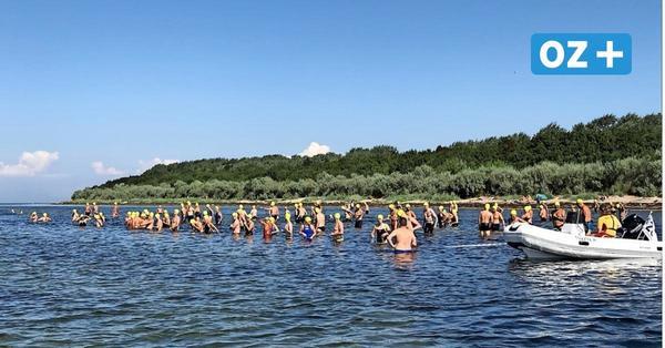 160 Starter: So war das Wismarbucht-Schwimmen in der Corona-Zeit