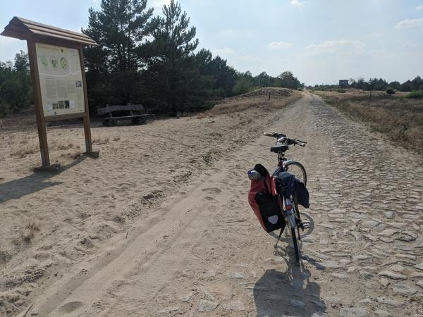 Der Weg durch den früheren Truppenübungsplatz - inzwischen längst ein Naturschutzgebiet - ist eine Schiebestrecke. Foto: Lars Sittig