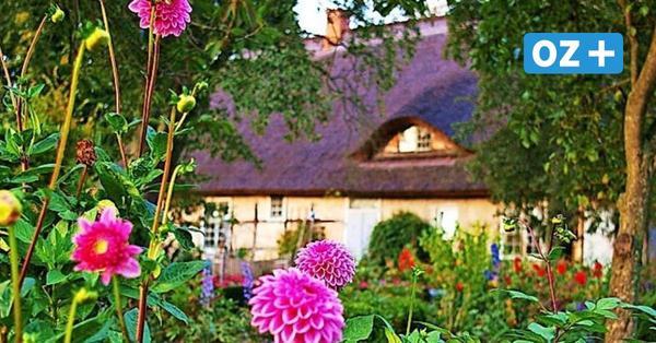 Gärten öffnen ihre Pforten: Besucher in Stralsund und Starkow willkommen