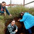 Göttinger Forscher: Mit dem Projekt Rootways Pflanzen dürrefest machen