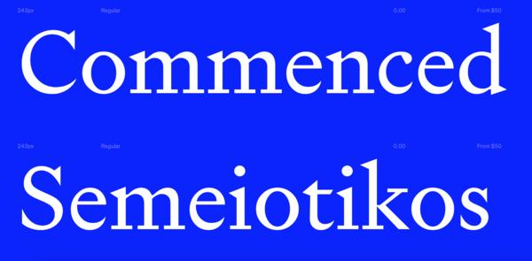 Signifier (Klim Type Foundry)