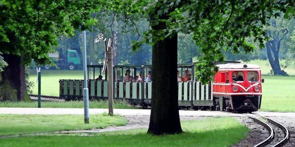 Auffälliges Verhalten: Dresdner Parkeisenbahn suspendiert Beschäftigten