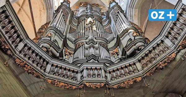 Premiere für Stralsunder Orgeltage – Das erwartet die Besucher