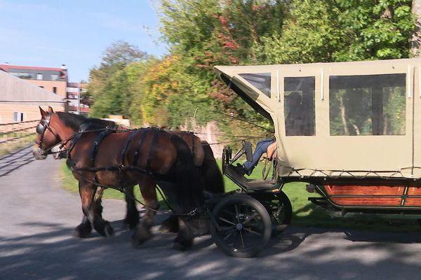 A Bachy, on teste le ramassage scolaire avec une calèche et des chevaux - Naar school met paard en kar