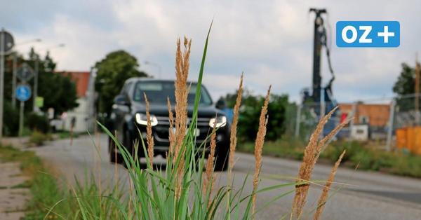 Greifswalder Hansering: Bürgerschaft gibt grünes Licht