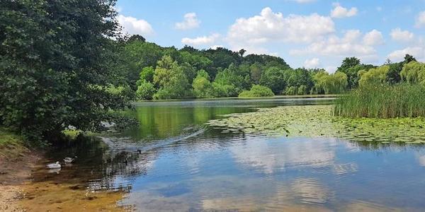 """Die Tour """"Gewässer in und um Lehrte"""" führt unter anderen zum Waldsee in Hämelerwald. (Foto: privat)"""