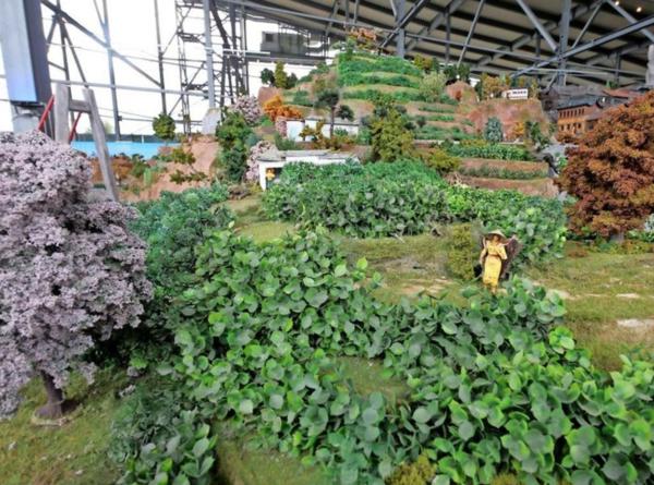 Weil es Teebäume als Modell nicht gab, dachten sich Yogi Meiners und sein Team kurzerhand etwas aus: Sie stellten die Teeplantage aus künstlichen Buchsbaumkugeln her. (Foto: Carolin George)
