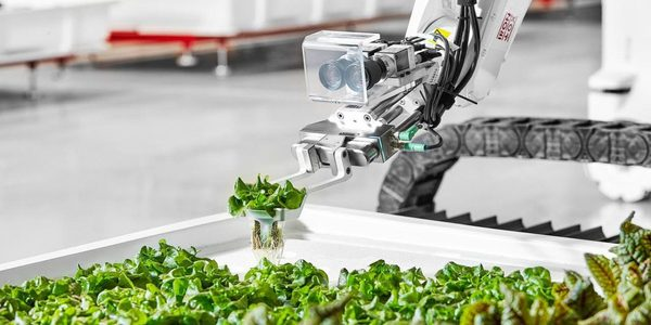 Iron Ox raises $20 million to grow robotic greenhouse operations