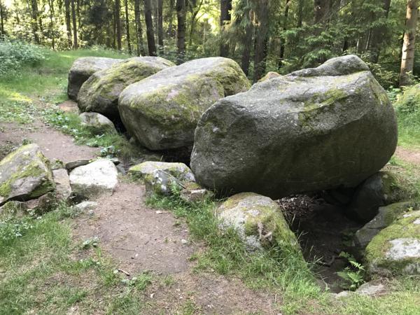 Großsteingrab im Everstorfer Forst (Foto: Michael Prochnow)