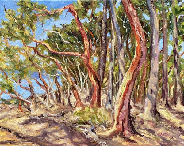 "Arbutus Grove West ""resting"" by Terrill Welch, 16 x 20 inch oil on canvas."