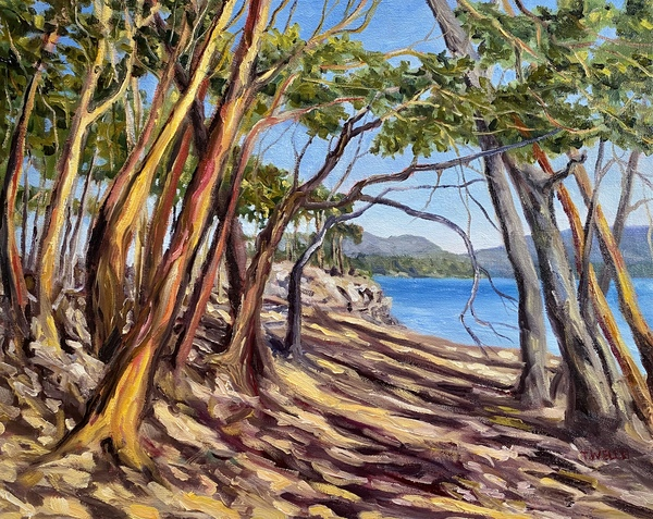 "Arbutus Grove East ""resting"" by Terrill Welch, 16 x 20 inch oil on canvas"