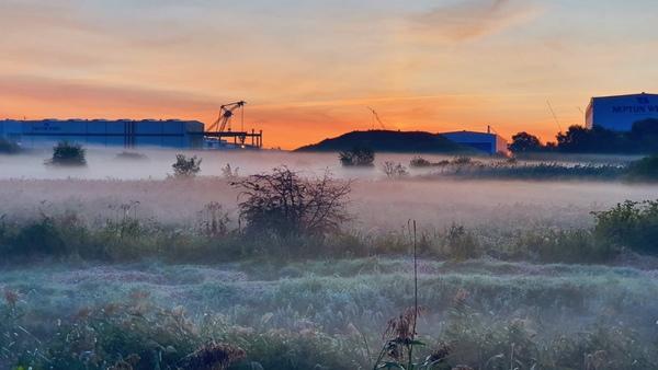 Mystische Morgenstimmung (Foto: Sebastian Grobe-Biallas)