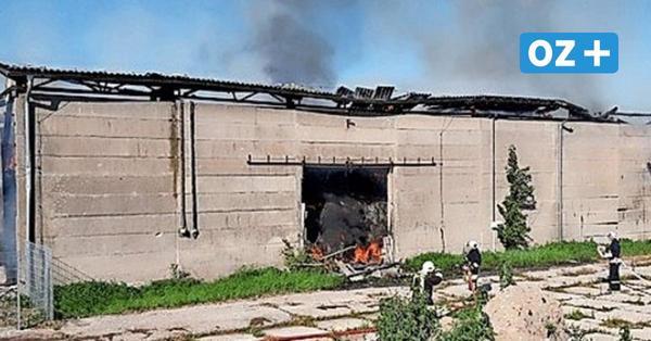 Brand in Nienhagen: Feuer zerstört 1500 Heuballen – 150 000 Euro Schaden