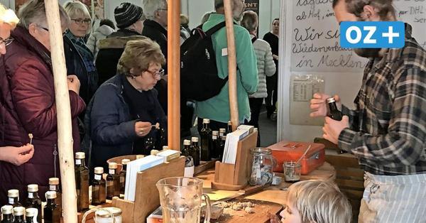 Hanseschau Wismar wird 30: Das erwartet die Besucher