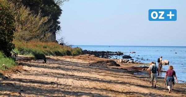 Insel Poel: Dieser Strand ist ein echter Geheimtipp für den Spätsommer