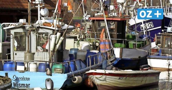 Abwrackprämie für Ostseekutter: So viel zahlt die EU für die Stilllegung von Fischerbooten