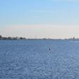 Negatief zwemadvies bij Braassemermeer vanwege blauwalg