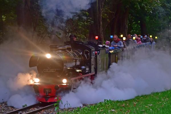 Die Liliput-Dampflok der Parkeisenbahn bei einer Lampion-Fahrt. Quelle: Lutz Brose