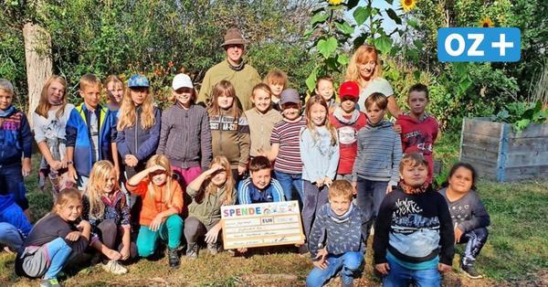 Hühnerstall im Schulgarten: Altenpleen bekommt Hilfe von Jägern