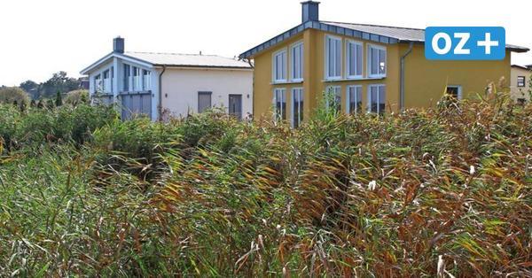 Balmer See: Staatssekretär muss für Uferbefestigung bei Ferienhaus zahlen