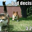 On Making Decisions