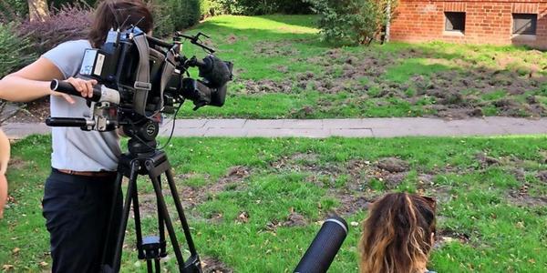 Streit um Wildschweine: Landesjäger kritisieren Lübecks Jagdstrategie